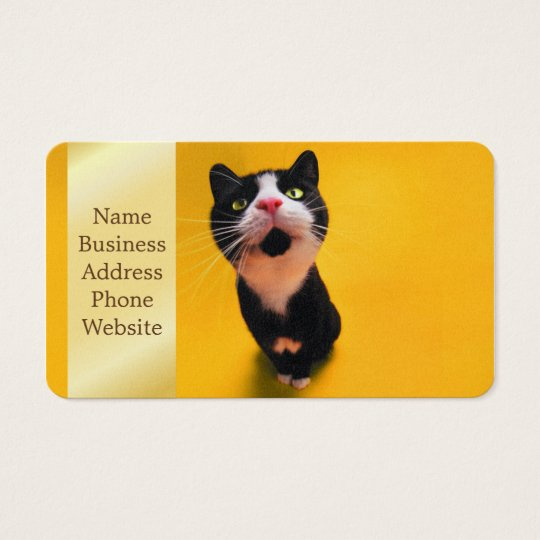 Black and white cat-tuxedo cat-pet kitten-pet cat business card
