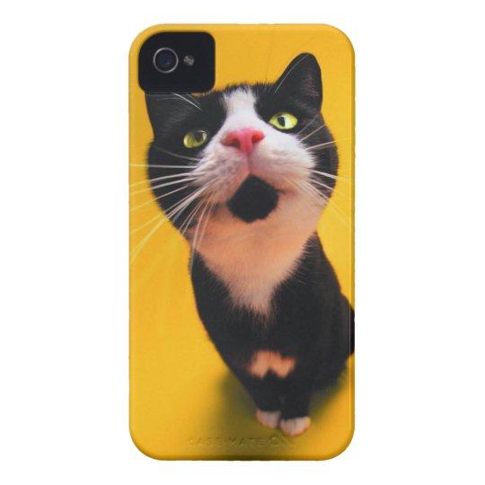Black and white cat-tuxedo cat-pet kitten-pet cat Case-Mate iPhone 4 cases