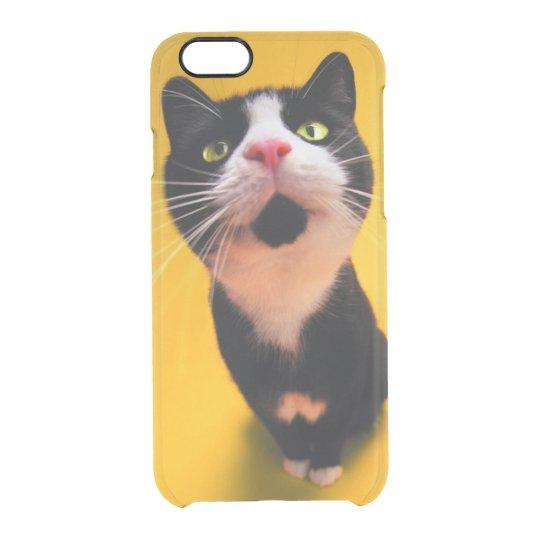 Black and white cat-tuxedo cat-pet kitten-pet cat clear iPhone 6/6S case