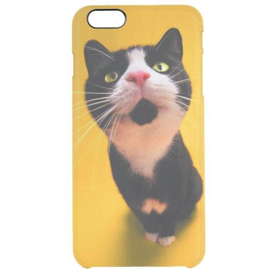 Black and white cat-tuxedo cat-pet kitten-pet cat clear iPhone 6 plus case