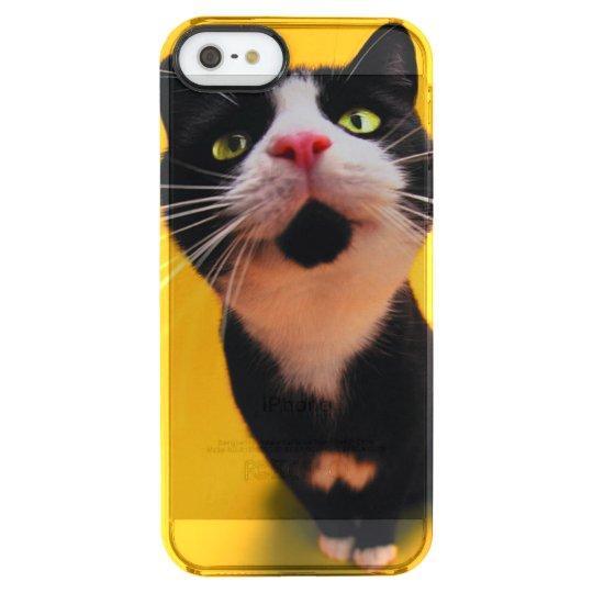Black and white cat-tuxedo cat-pet kitten-pet cat clear iPhone SE/5/5s case