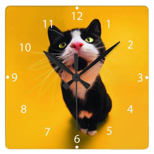 Black and white cat-tuxedo cat-pet kitten-pet cat clocks