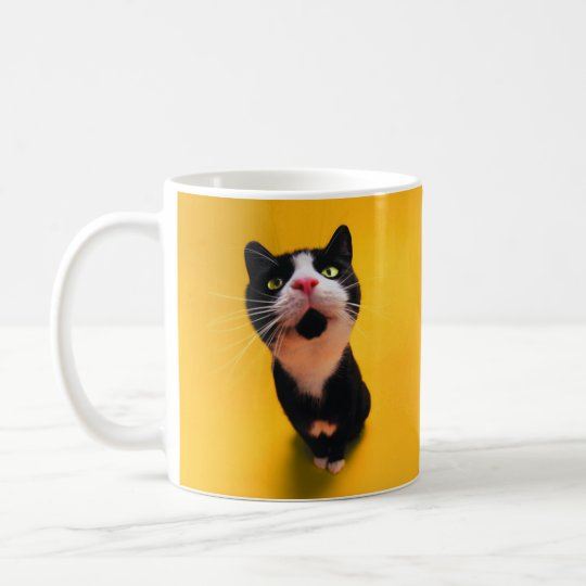 Black and white cat-tuxedo cat-pet kitten-pet cat coffee mug