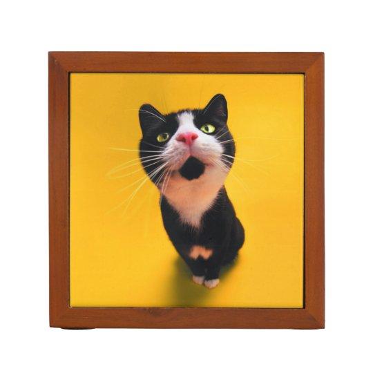 Black and white cat-tuxedo cat-pet kitten-pet cat desk organizer