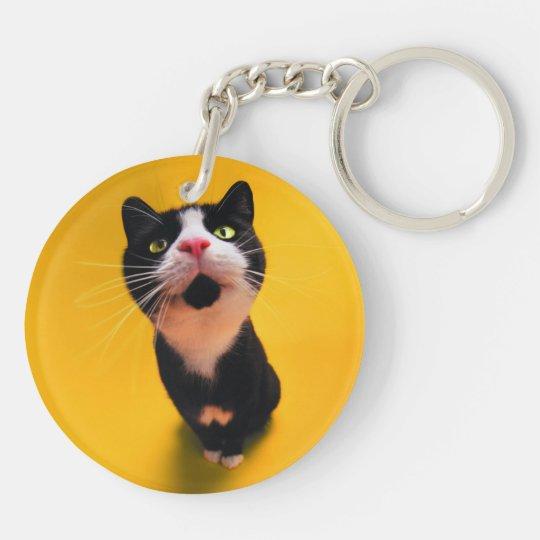 Black and white cat-tuxedo cat-pet kitten-pet cat Double-Sided round acrylic keychain