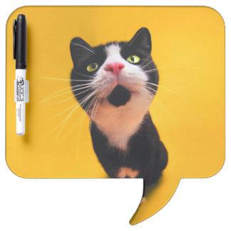 Black and white cat-tuxedo cat-pet kitten-pet cat dry erase board