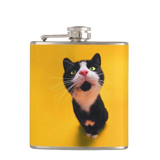 Black and white cat-tuxedo cat-pet kitten-pet cat flasks