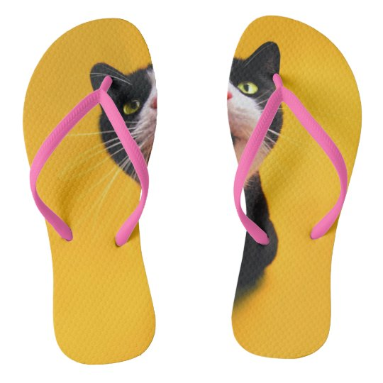 Black and white cat-tuxedo cat-pet kitten-pet cat flip flops