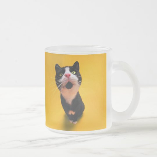Black and white cat-tuxedo cat-pet kitten-pet cat frosted glass coffee mug