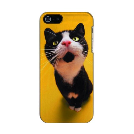 Black and white cat-tuxedo cat-pet kitten-pet cat incipio feather® shine iPhone 5 case