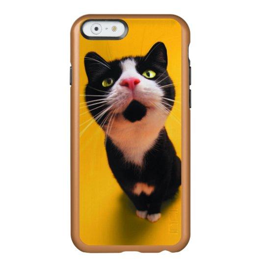 Black and white cat-tuxedo cat-pet kitten-pet cat incipio feather® shine iPhone 6 case