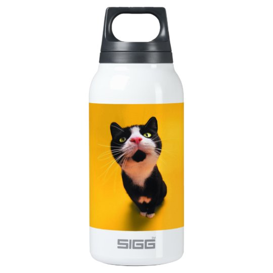 Black and white cat-tuxedo cat-pet kitten-pet cat insulated water bottle