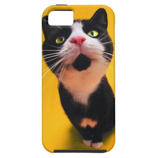 Black and white cat-tuxedo cat-pet kitten-pet cat iPhone 5 case