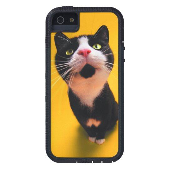 Black and white cat-tuxedo cat-pet kitten-pet cat iPhone 5 cases