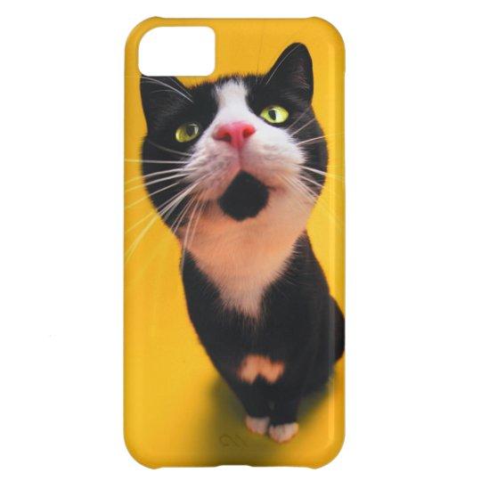 Black and white cat-tuxedo cat-pet kitten-pet cat iPhone 5C cover