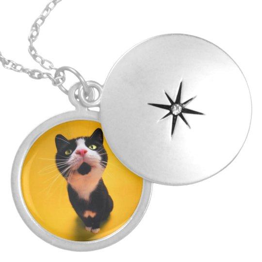 Black and white cat-tuxedo cat-pet kitten-pet cat locket necklace