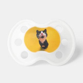 Black and white cat-tuxedo cat-pet kitten-pet cat pacifier