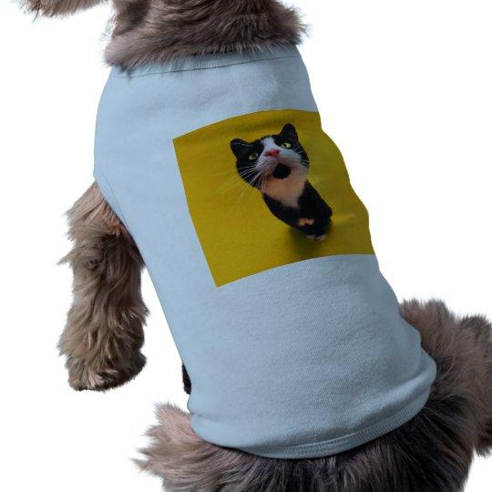 Black and white cat-tuxedo cat-pet kitten-pet cat pet shirt