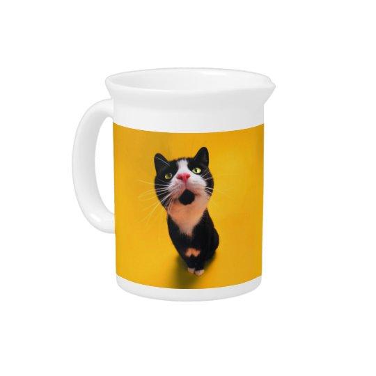 Black and white cat-tuxedo cat-pet kitten-pet cat pitchers