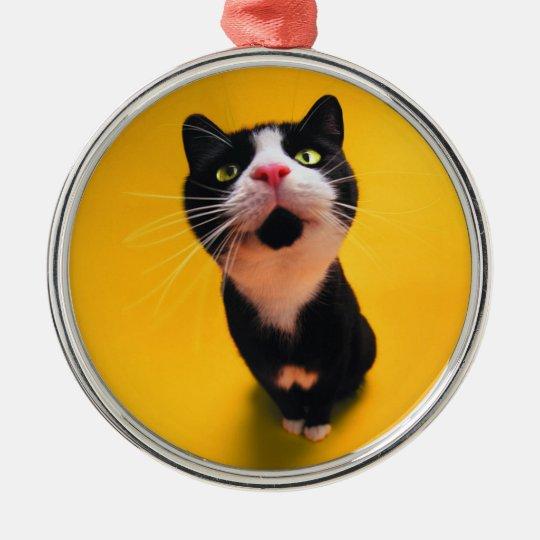 Black and white cat-tuxedo cat-pet kitten-pet cat Silver-Colored round ornament
