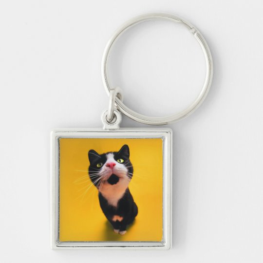 Black and white cat-tuxedo cat-pet kitten-pet cat Silver-Colored square keychain