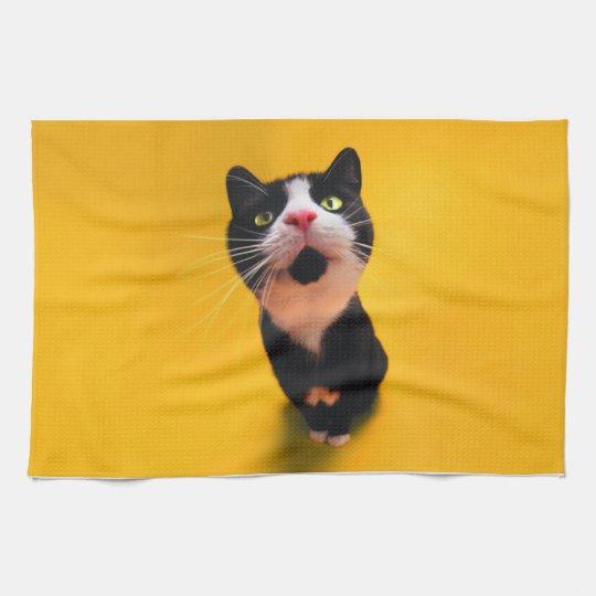 Black and white cat-tuxedo cat-pet kitten-pet cat towels