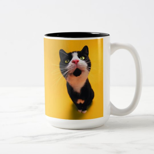 Black and white cat-tuxedo cat-pet kitten-pet cat Two-Tone coffee mug