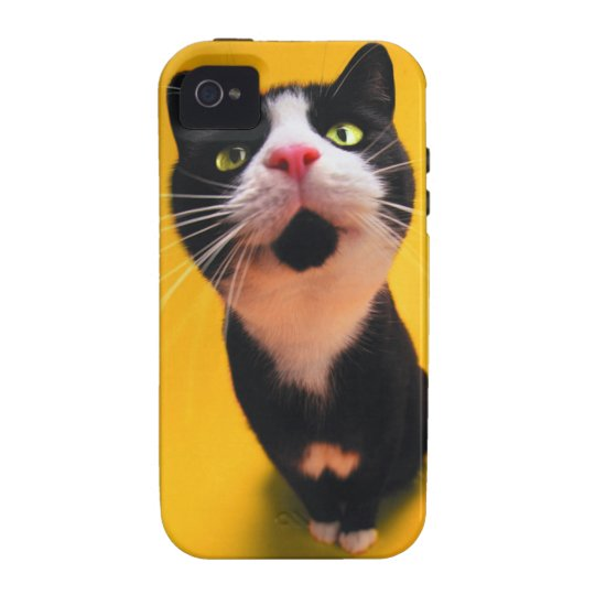 Black and white cat-tuxedo cat-pet kitten-pet cat vibe iPhone 4 cases