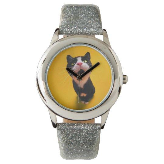 Black and white cat-tuxedo cat-pet kitten-pet cat watches