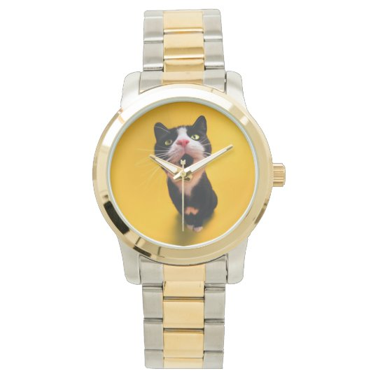 Black and white cat-tuxedo cat-pet kitten-pet cat watches