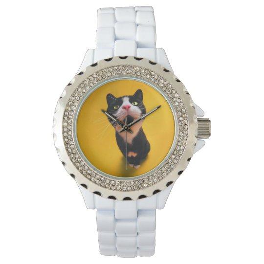 Black and white cat-tuxedo cat-pet kitten-pet cat wristwatches