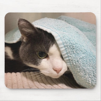 Black and White Cat Under Towel Mousepad