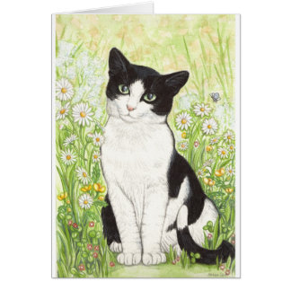 Black and White cat with daisies Card