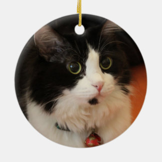 Black and White Cat with Round Eyes Ceramic Ornament