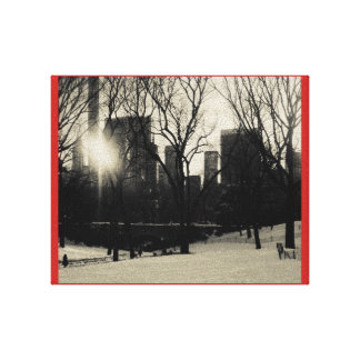 black and white, central park, NYC Canvas Print