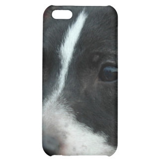 Black and White Chihuahua iPhone 4 Case