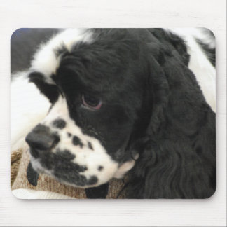 Black and White Cocker Spaniel Mouse Pad