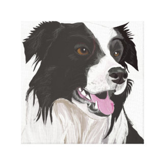 Black and White Collie with Brown Eyes Portrait Canvas Print