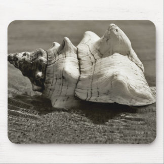 Black and White Conch Shell Mouse Pad
