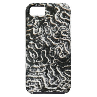 Black and White Coral II Abstract Nature Photo iPhone 5 Cover