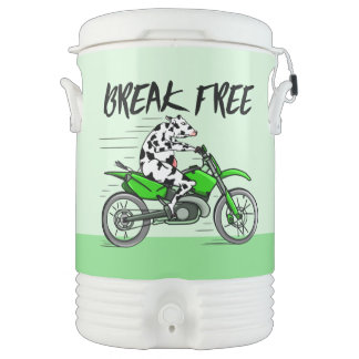 Black and white cow breaking free drinks cooler