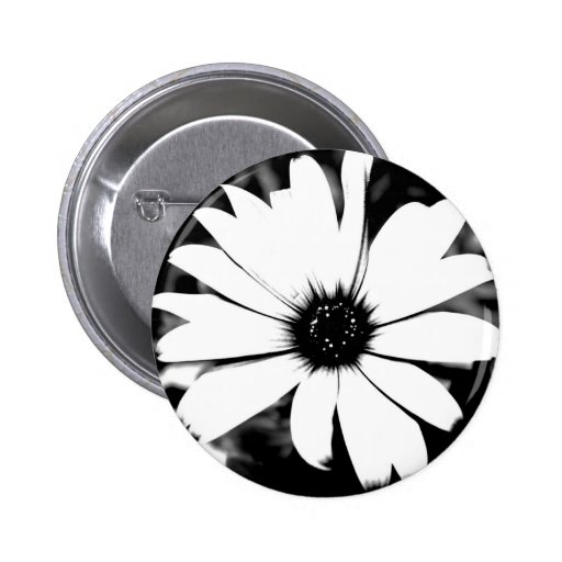 Black and White Daisy Pins