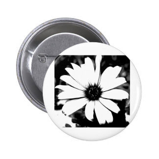 Black and White Daisy Buttons