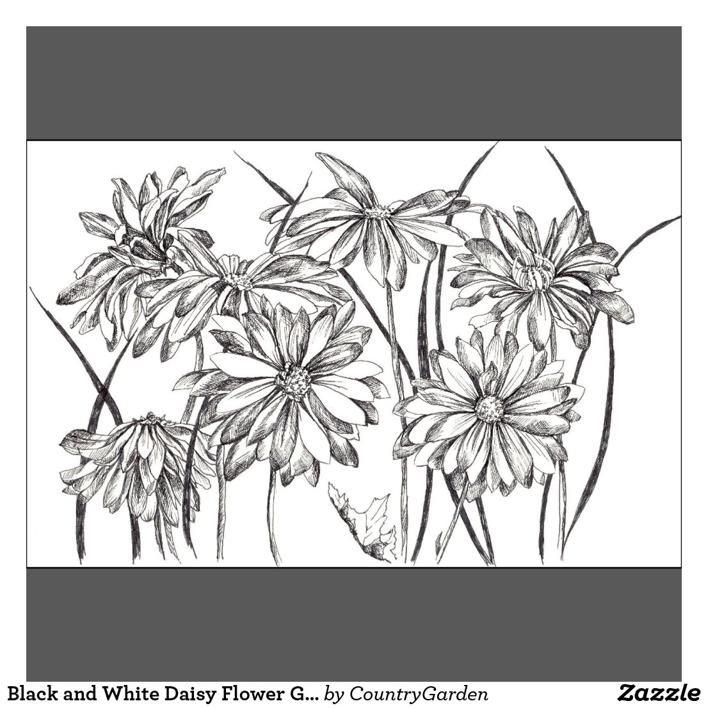 Flower Prints Black And White Black And White Daisy Flower
