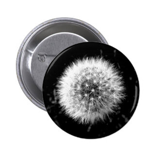 Black and white dandelion badge