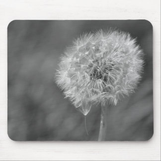 Black and White Dandelion Flower Photography Mouse Pad