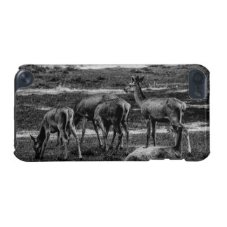 Black and White Deer Herd, Animal Photography iPod Touch (5th Generation) Covers