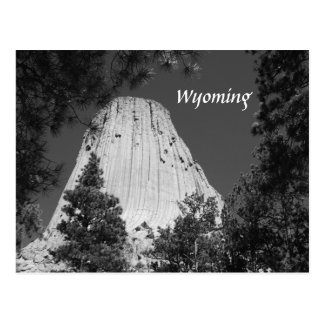 Black and White Devils Tower Postcard