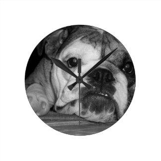 Black and White English Bulldog Puppy Wallclock