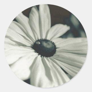 Black And White - Eyed Susan Classic Round Sticker